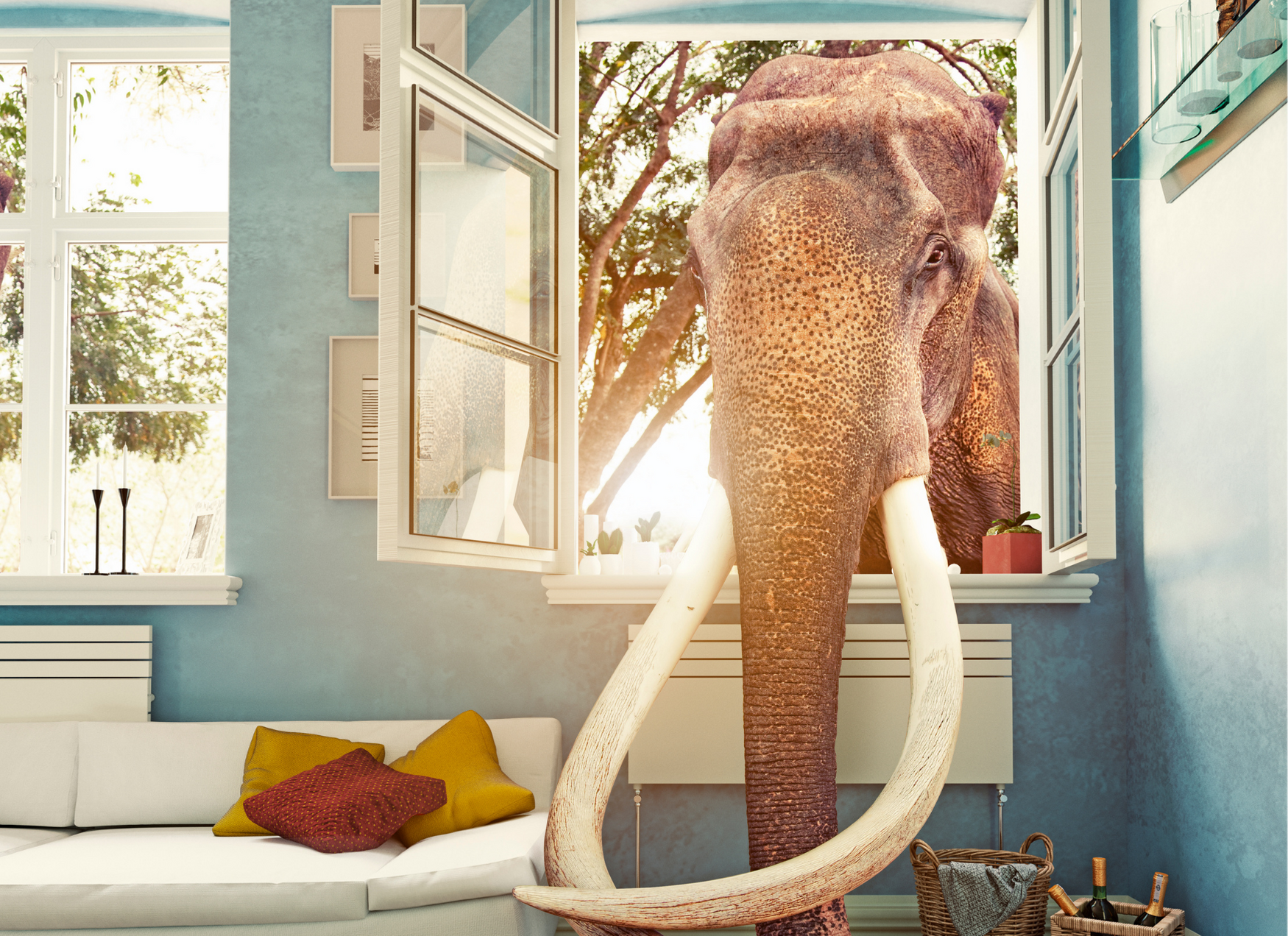 The Elephant in the Room: Reducing stigma through sharing.